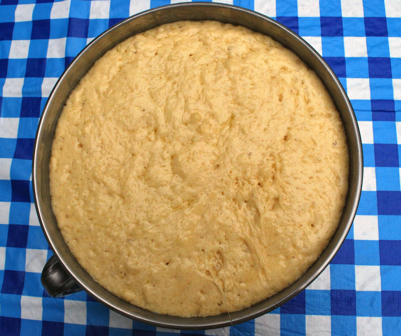 Risen Waffle Dough
