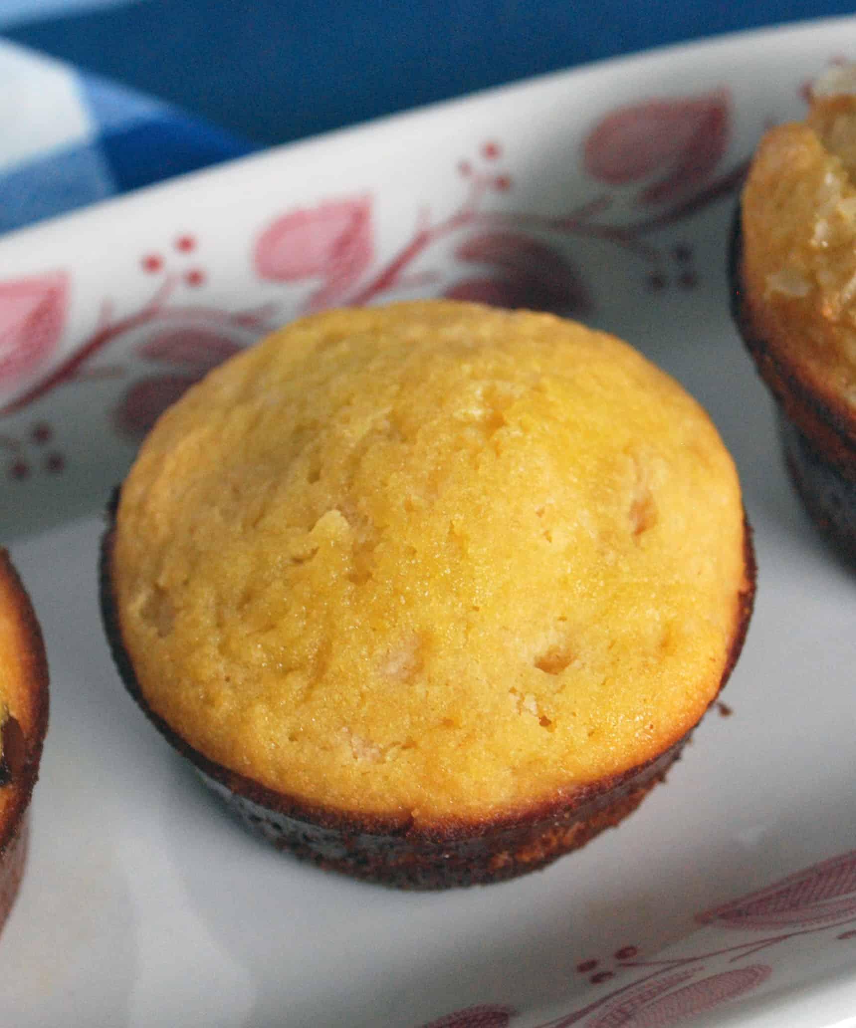 Coconut Flour Muffin