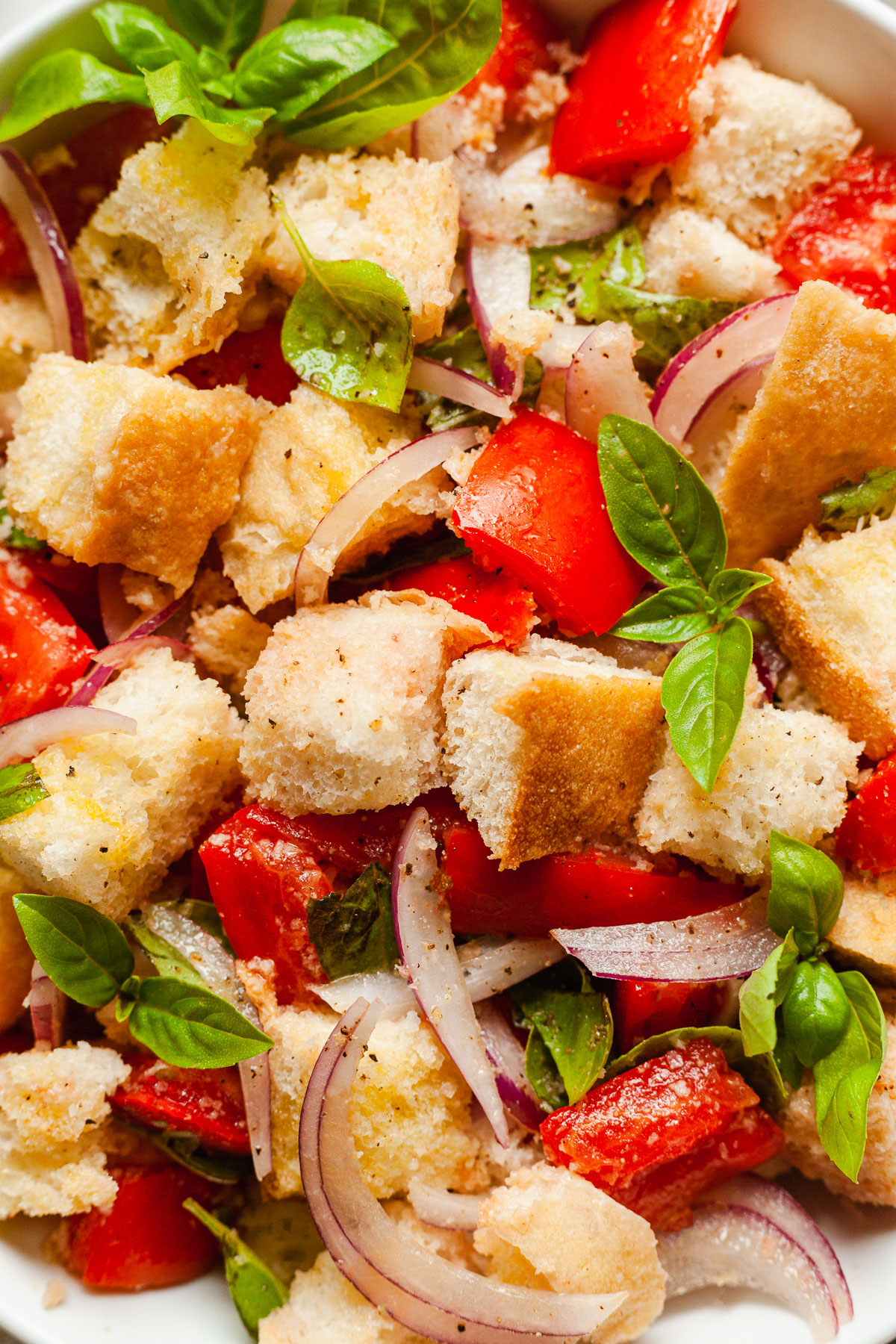 close up of tomatoes, bread, onion, and basil