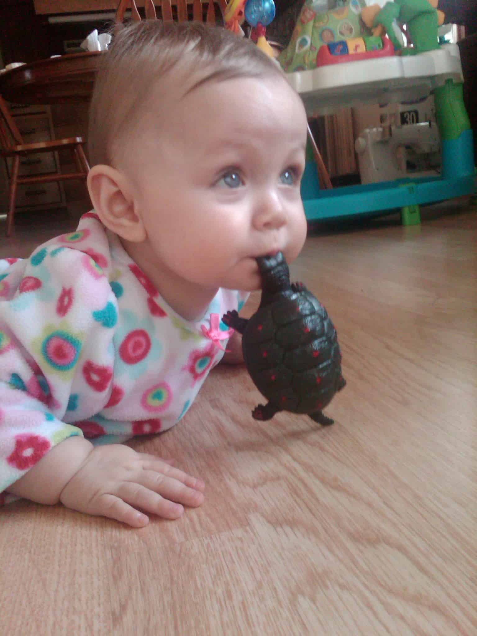Lola with Turtle