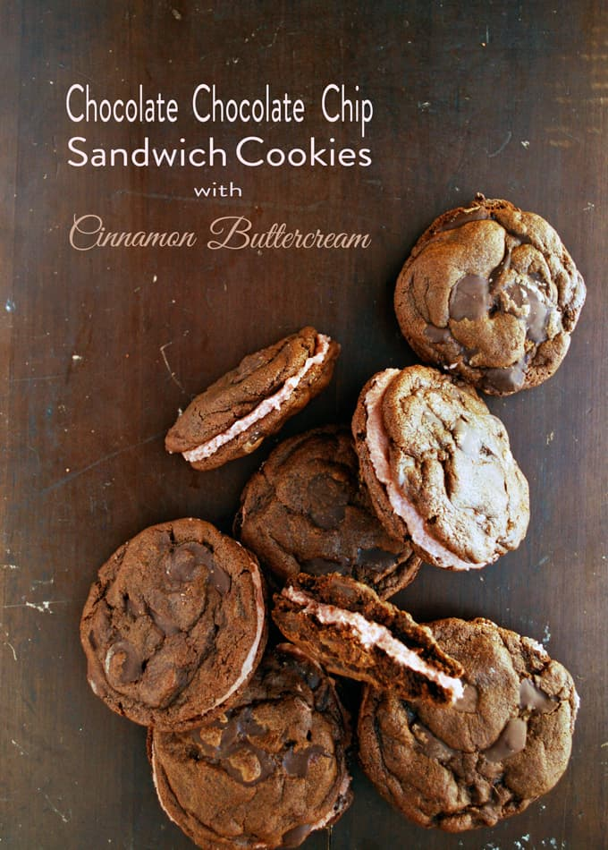 Chocolate Chocolate Chip Sandwich Cookies with Cinnamon Buttercream // The Live-In Kitchen