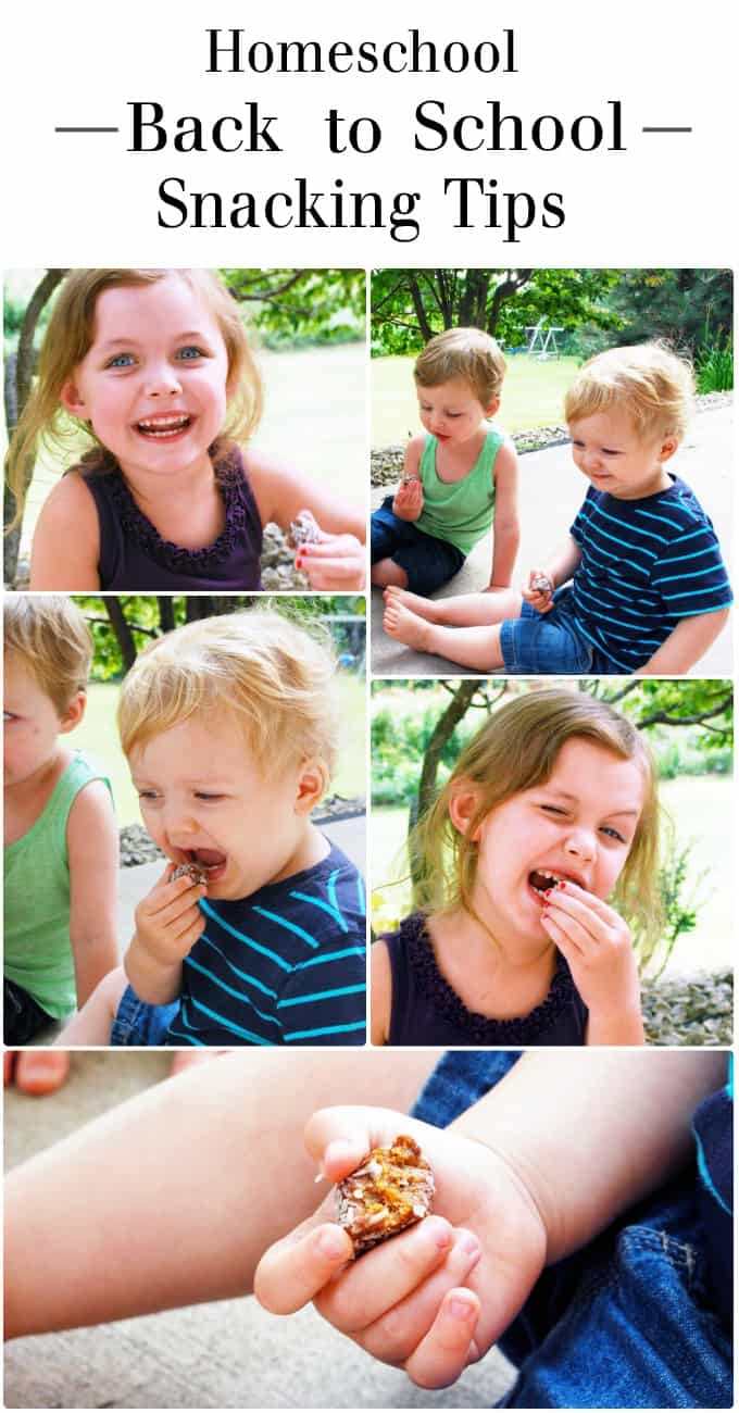 Homeschool Back to School Snacking Tips! www.theliveinkitchen.com