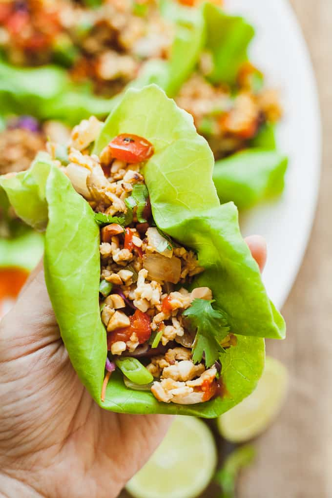 Healthy Vegan Lettuce Wraps - A quick and easy vegan dinner idea that is full of protein and nutrients! #vegan #vegetarian #healthy #easy #fast #dinner