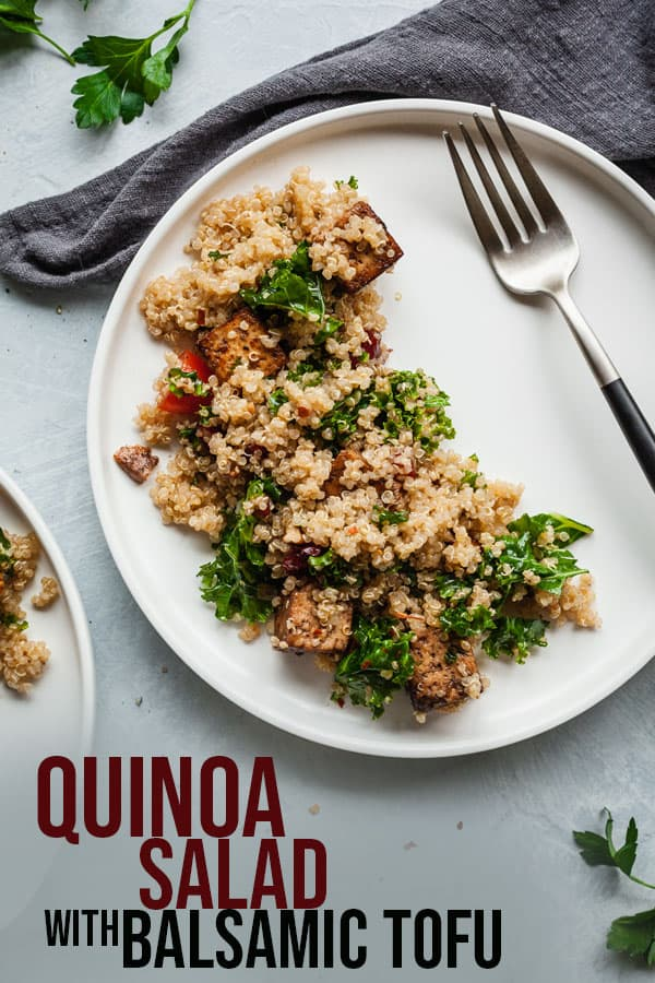 Vegan Quinoa Salad With Balsamic Tofu The Live In Kitchen