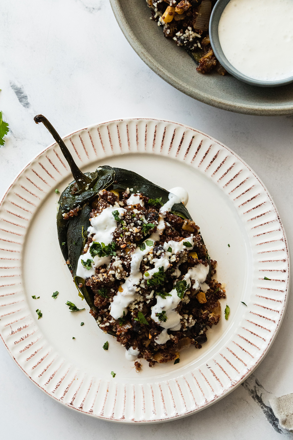 plated dish of one vegetarian stuffed poblano pepper