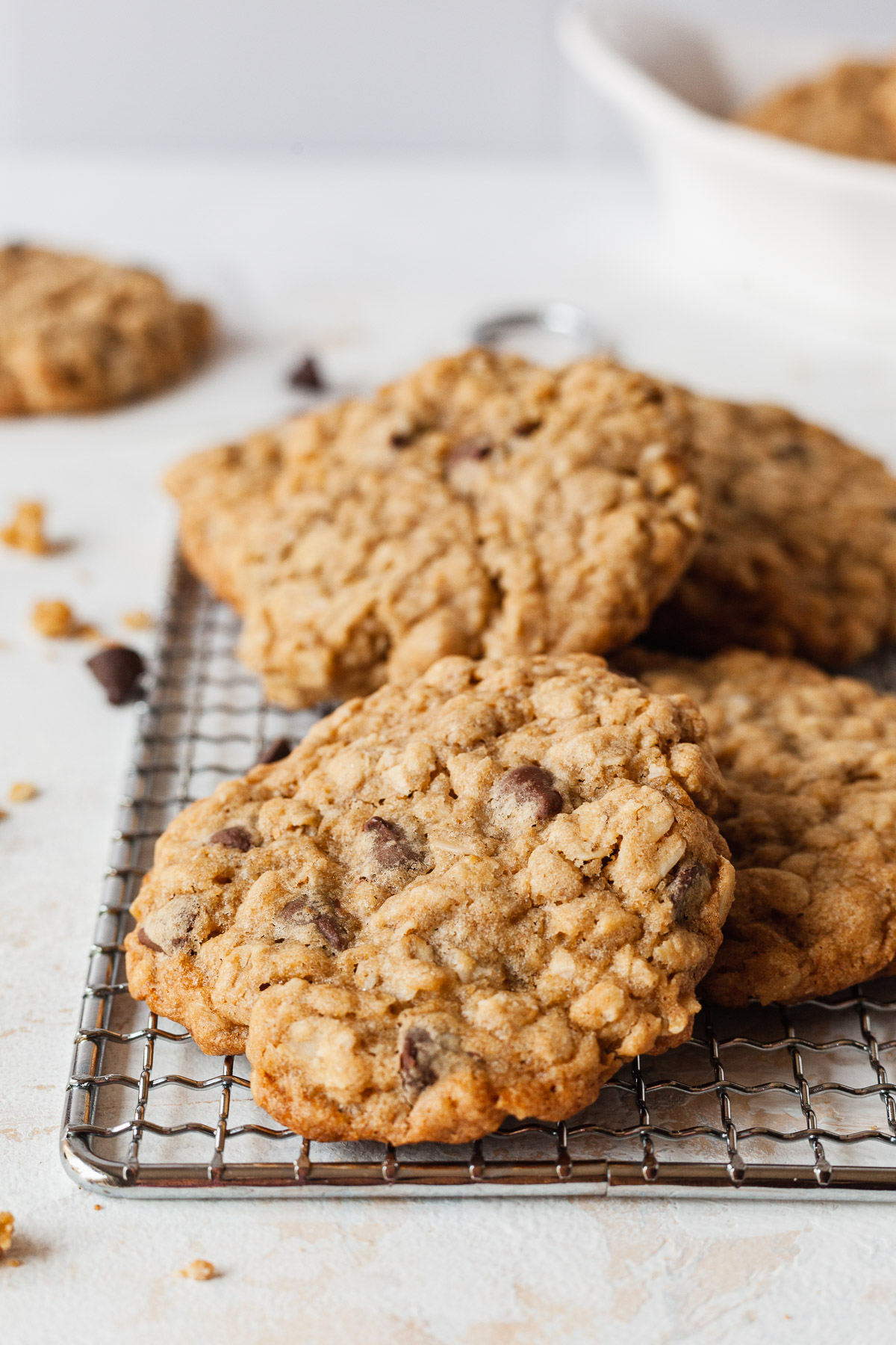 image of oatmeal chocolate chip cookies on a cooking rack
