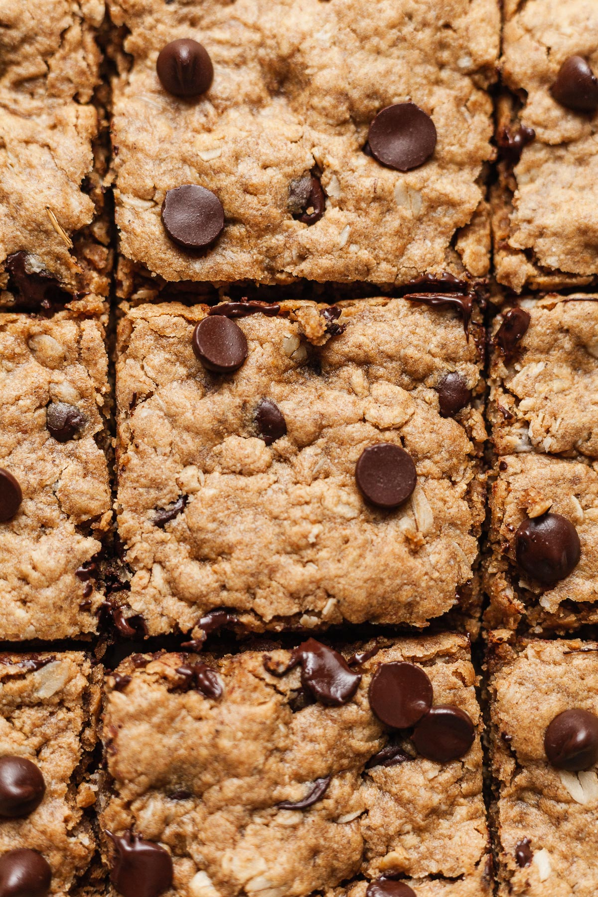 close up image of oatmeal peanut butter bars sliced