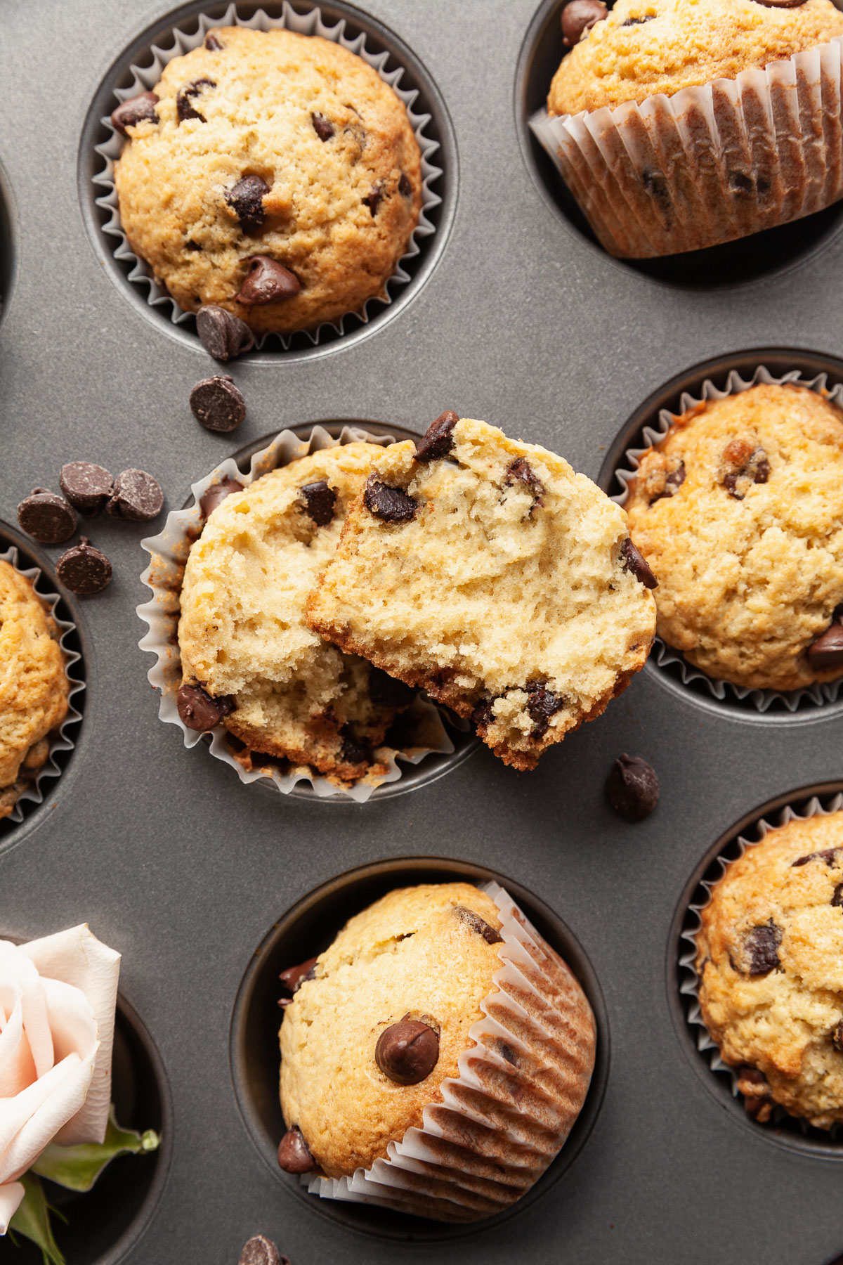 several homemade chocolate chip muffins in a muffin tin with one torn in half